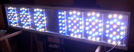 Rampe LED récifal